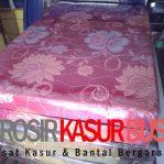 Kasur Busa Lipat 2 Cover Kain Spring Bed Ukuran 120x180x10 Merah